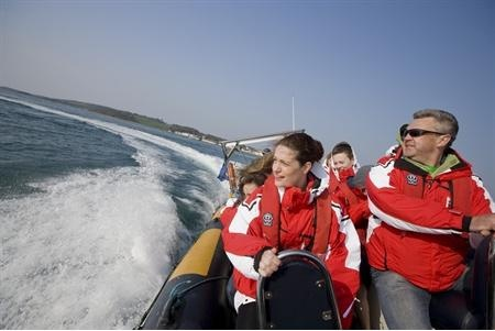Strangford Sea Safari